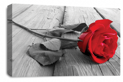 Rose Flower Canvas Wall Art Red Grey White Floral Picture Print